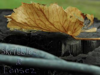 Leaf 6   Set DLM by SkriBlerLenZ