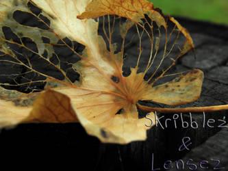 Leaf 7   Set DLM by SkriBlerLenZ
