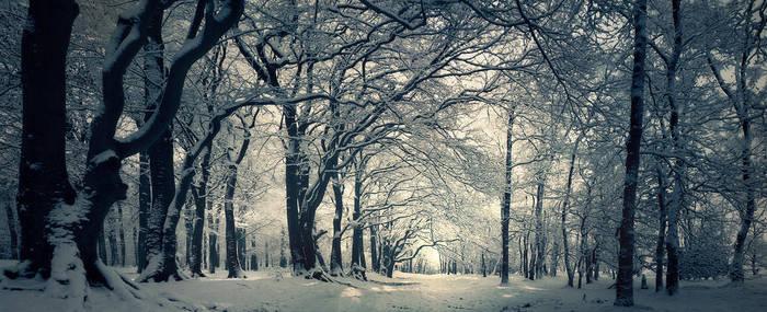 Street of Snow by Burning-Liquid