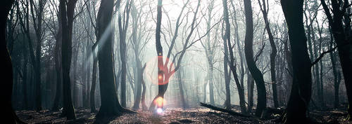 Enchanted by Burning-Liquid