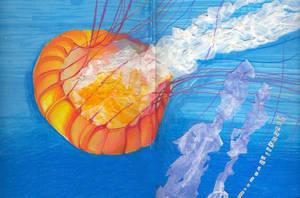 Jellyfisch by kitton