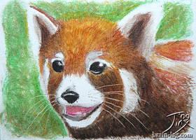 Red Panda by CitizenOfZozo-art