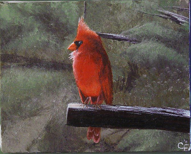 Cardinal by CitizenOfZozo-art