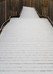 Snow Path by EylianaStuff