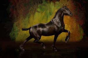 Orion - Portrait of a Stallion by shilohs