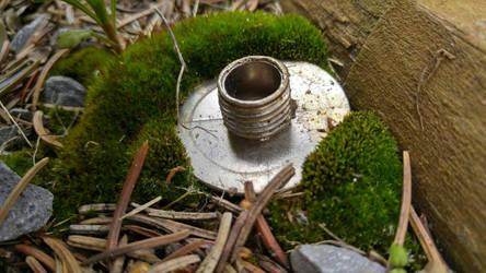 Moss by Oniiix
