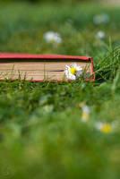 Books I by birgitengelhardt
