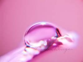 ::rich soul:: by onixa