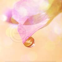 :Fairy Land: by onixa