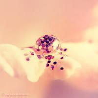 Glittery Goodness by onixa