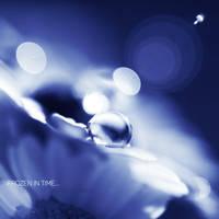 Frozen in Time... by onixa