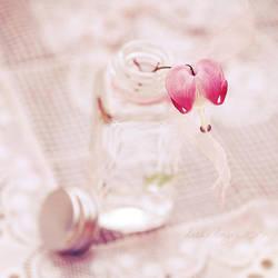.: Bleeding Heart :. by onixa