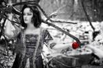 :: The Apple :: by onixa