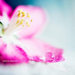 Droplet Heaven by onixa