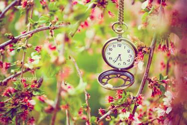 :: IT'S TIME III :: by onixa