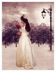 Winter Bride by shaia83
