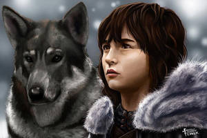 Bran Stark by CARFillustration