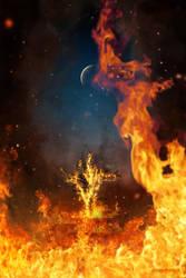 Burning Tree by TobiasRoetsch