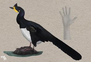 Halszkaraptor escuilliei by DanneArt