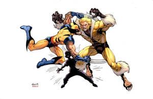 Wolverine: Worst Day Ever by JohnRauch