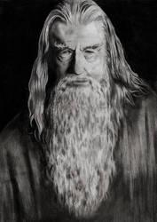 Gandalf by gabor5555