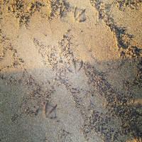 Footprints by Slicenndice