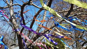 Ribbons by Slicenndice