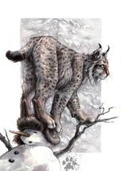 Lynx Lynx by screwbald