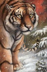 Amur by screwbald