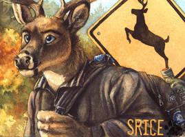 Srice Badge by screwbald