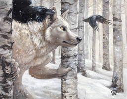 Winter's Shadow by screwbald