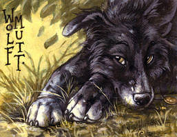 Badge - Wolfmutt by screwbald