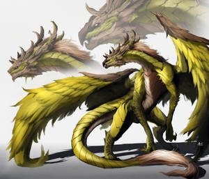 Dragon by DoomGuy26