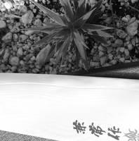 Crossing Blades by FeiFongWong