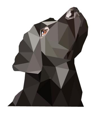 Black Labrador Geo Art (Print Version) by emynemzz