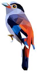 Colorful Bird Geo Art by emynemzz