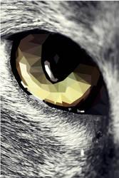 Wolf Eye #3 (Partial) Geo Art by emynemzz