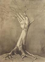 Tree Limb. by Malignanttoast