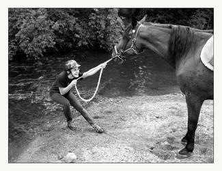 Stubborn Horse ID by Goodbye-kitty975