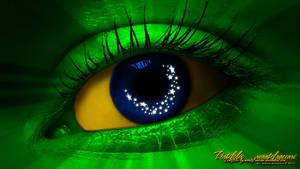 Olhos do Brasil - Eyes Of Brazil by renatofraccari