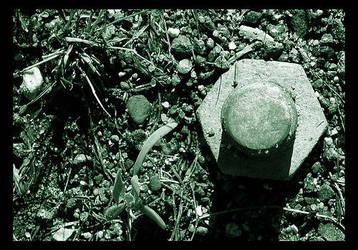 Roots by scoopninja