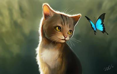 Cat and butterfly by cicakkia