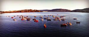 Fisherman working Ria de Ferrol, Spain by carrodeguas