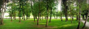 Parque Rio Freixeiro, Spain by carrodeguas
