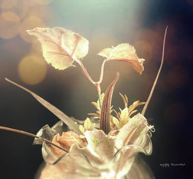 Plantita de plastico by acg3fly