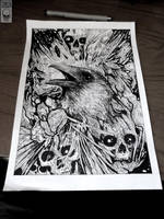 Raven by TimurKhabirov