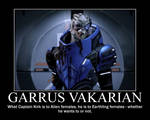 Garrus Motivational by NeroonCousland
