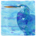 Great Blue Heron by wooden-horse