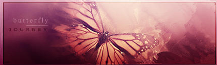 Butterfly by Sparrow-style