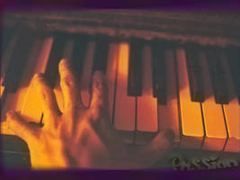 Piano Passion Wallpaper by Sketchee